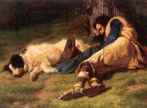 sleeping_shepherd